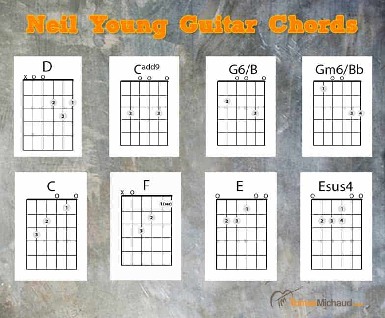 Neil Young Guitar Lesson Needle And The Damage Done Chords