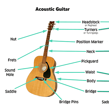 Guitar Anatomy Parts Of A Guitar Lesson 2 Real Guitar Lessons